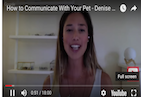 Do you ever wish you could communicate with your pet? Well, did you know your pet's behavior may be a reflection of your own? On today's exciting new episode of The Inspiration Show, my special guest and pet intuitive and trainer, Denise Mange, shares that our pets act as mirrors reflecting back to us bigger energetic patterns in our lives which may no longer serve us. When we acknowledge, heal and release these patterns, it becomes evident in our pets' energies, attitudes, and behaviors. Watch this episode if you'd like to know how to train, connect, and relate to your animal companion. It's truly eye-opening!